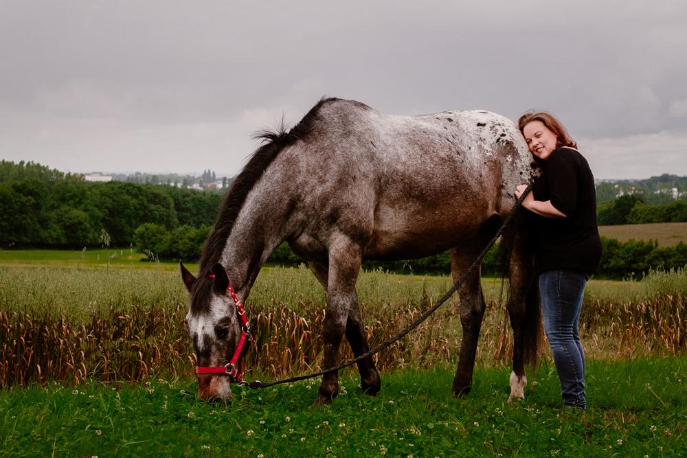 photographe cheval équestre